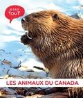 Je sais tout : Les animaux du Canada